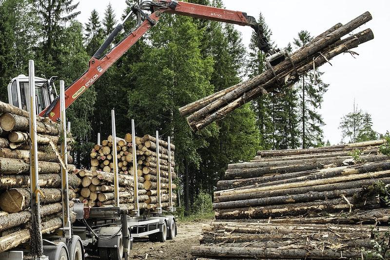 test tømmervogntog